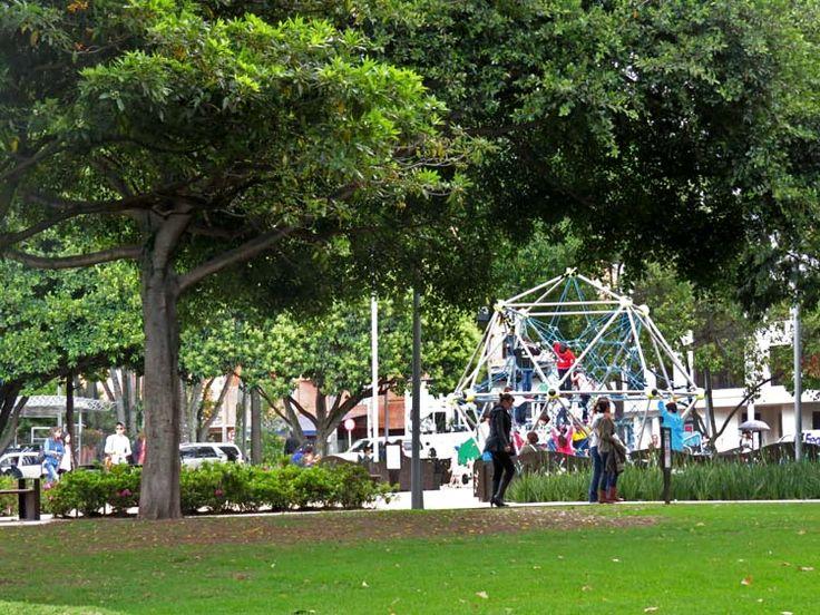 14. Los árboles adornan todos los espacios del Parque de la 93.