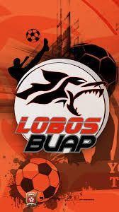 Image result for cf lobos de la buap