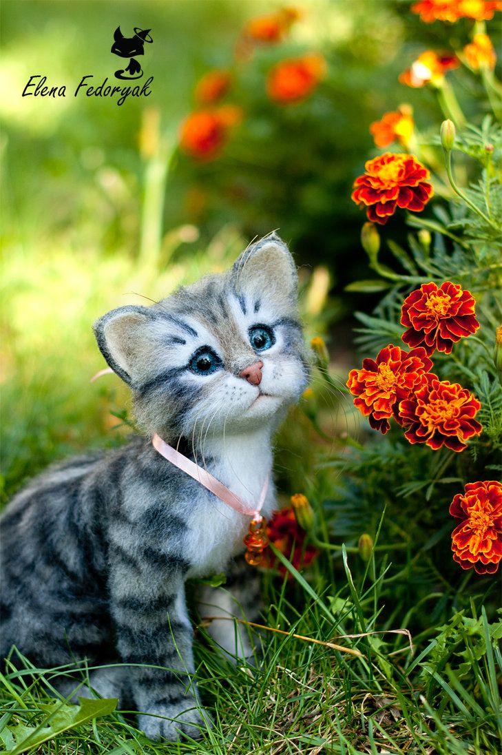 kitten Asya by KittenBlackUA on DeviantArt