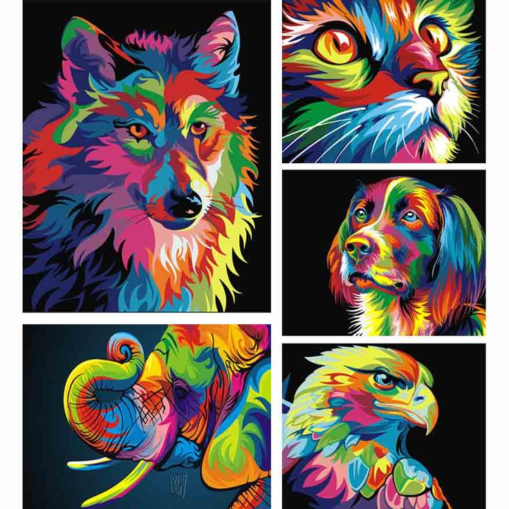 5d diy diamond painting cross stitch Colorful animal picture mosaic kit diamond embroidery hobbies and crafts needlework