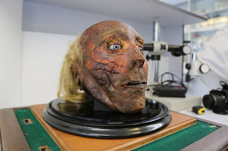 I Hung Out With Jeremy Bentham's Severed Head And This Is What I Learned