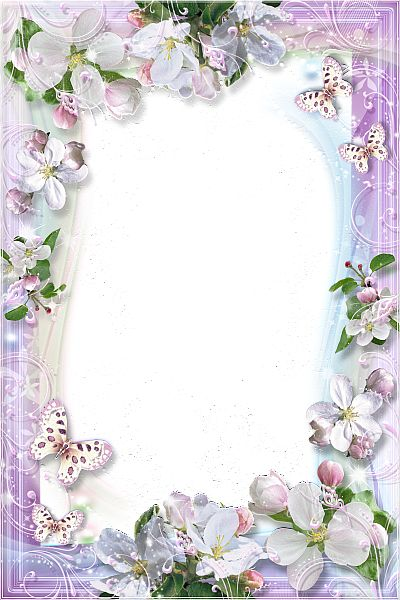 beautiful flowers transparent frame