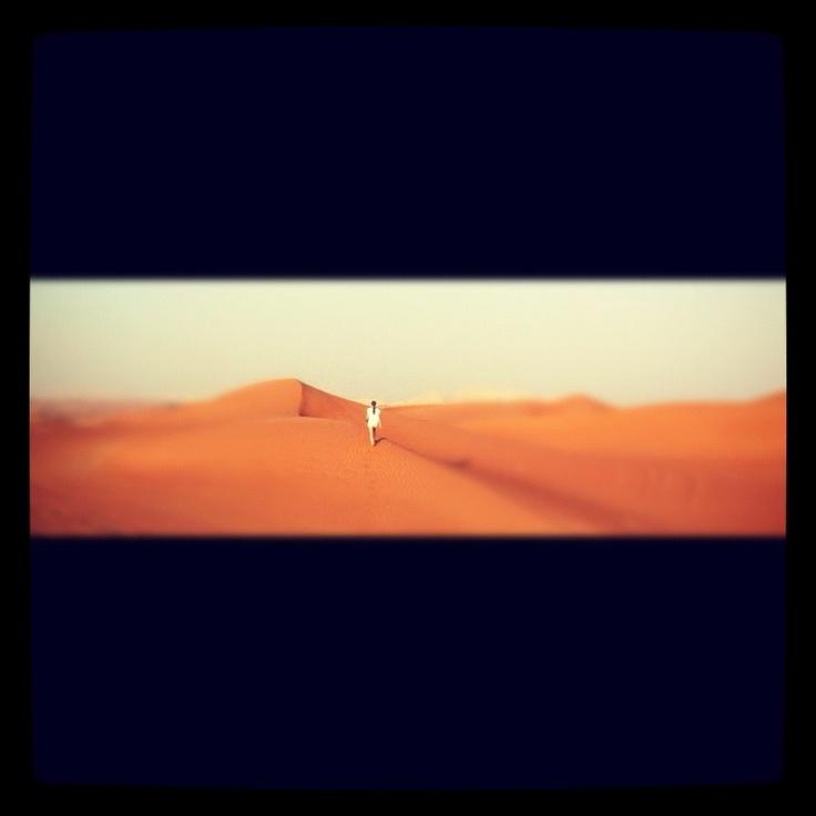 Desert, sanddunes