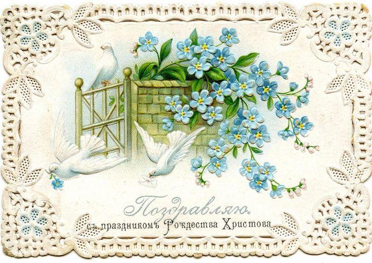 Поздравления, открытки с цветами каталог