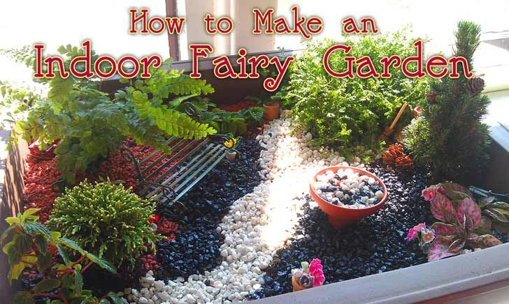 If you were a fairy, wouldn't you want to hang out in this garden?  Read more at http://www.craftjr.com/how-to-make-an-indoor-fairy-garden/#RoEsS4eY6MwdyLHk.99