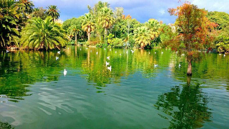 Ännu en härlig bild från Barcelona, detta var i en park utanför Barcelona zoo.