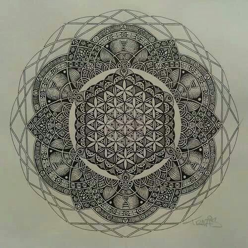 Flower of life - sacred geometry - dna - lotus                                                                                                                                                     Mais