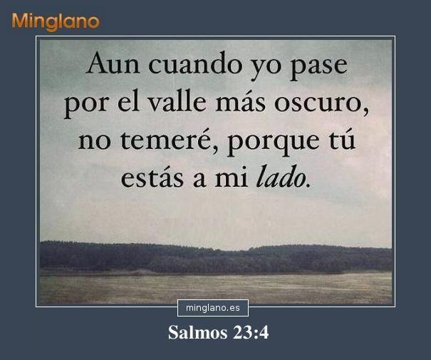 Salmos De La Protección De Dios Salmos Minglano Frases