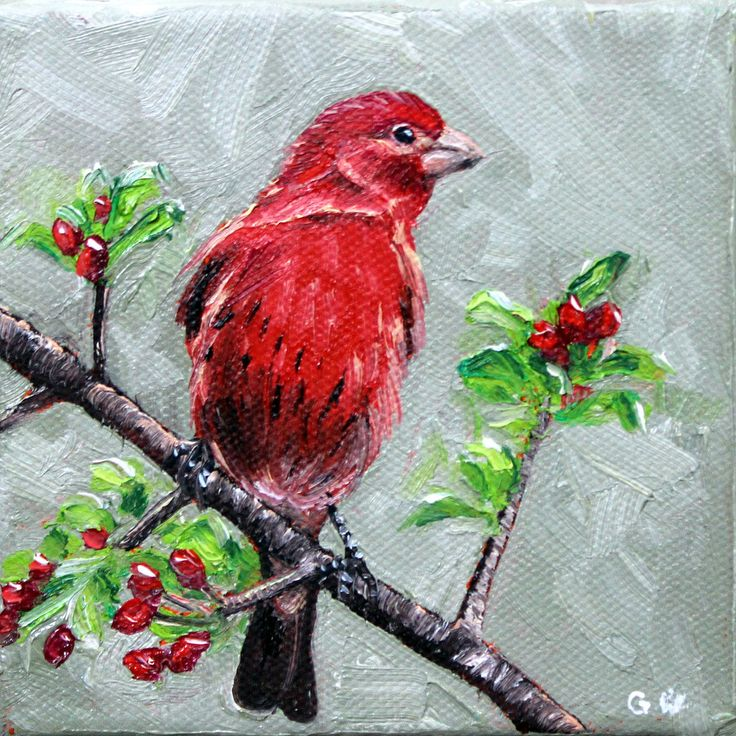 "ORIGINAL PAINTING, BIRD painting, original art, red bird, 4""x 4"" painting, small painting, oil painting, wall art, home decor, nature, red by GrazynaWolski on Etsy"