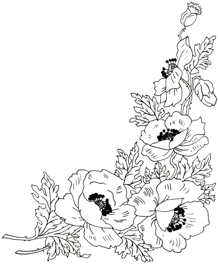 Digital Two for Tuesday: Beautiful Flower Designs for Embroidery or Digital…