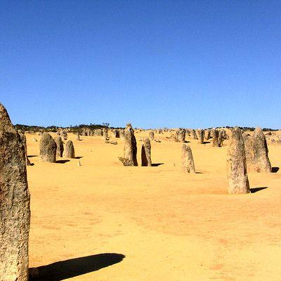 Где находится знаменитая пустыня известная выступающими из песка многочисленными башнями? в Австралии! А точнее - в национальном парке Намбунг в Западной Австралии. Эти башни являют собой известняковые скалы. Ученые не уверены, как они были созданы - по этому вопросу существует три гипотезы.
