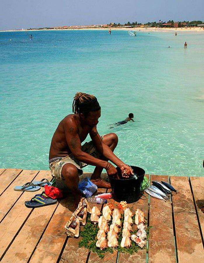 Brava, au Cap-Vert Petite île volcanique où le vert de la végétation se marie au bleu de l'océan, Brava séduit avec ses maisons fleuries...