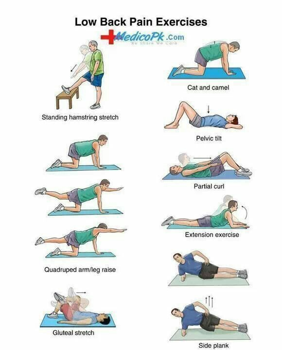 Lower back pain exercises/stretches