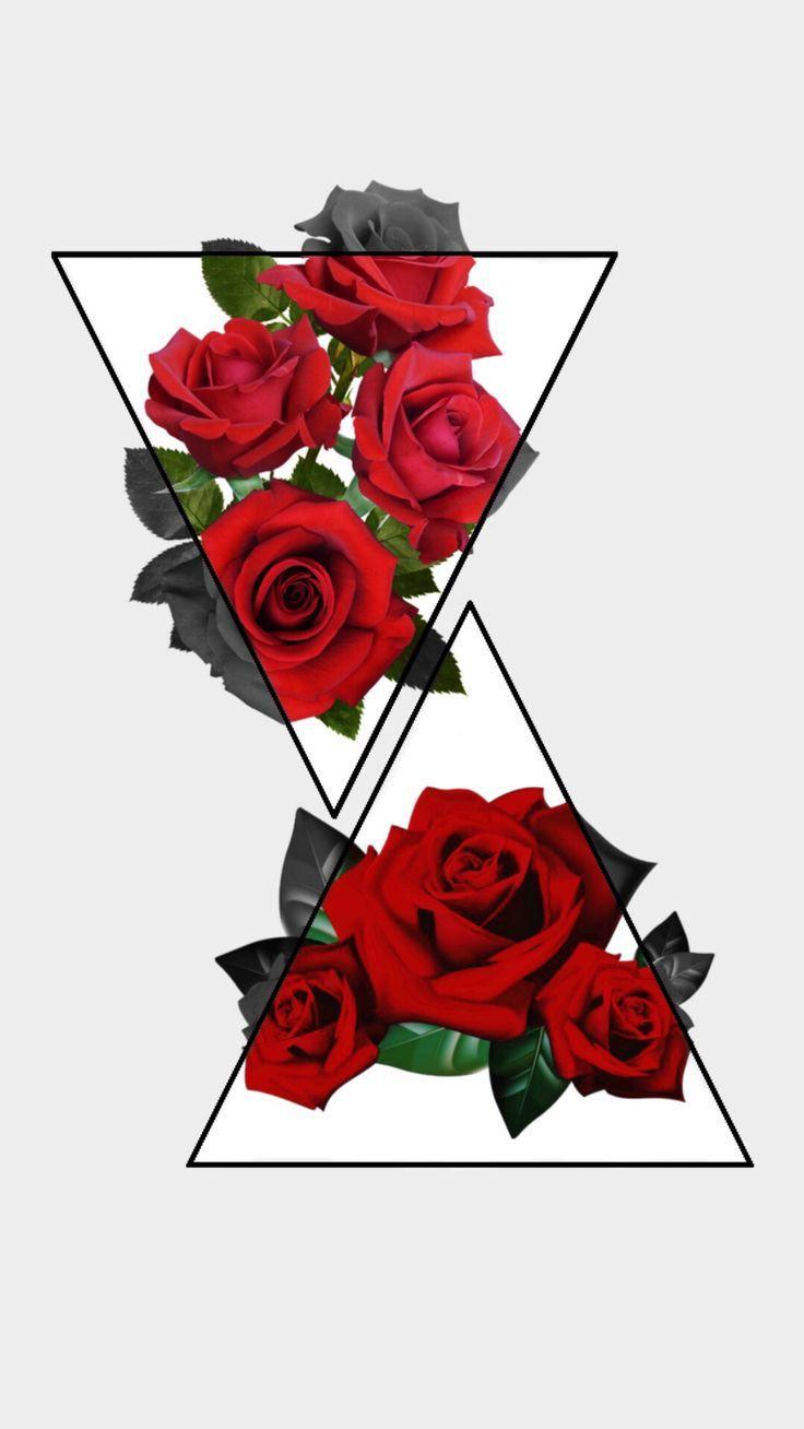 @sunkissed_cactus rose wallpaper