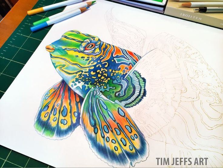 492 best Adult Coloring images on Pinterest | Adult coloring ...