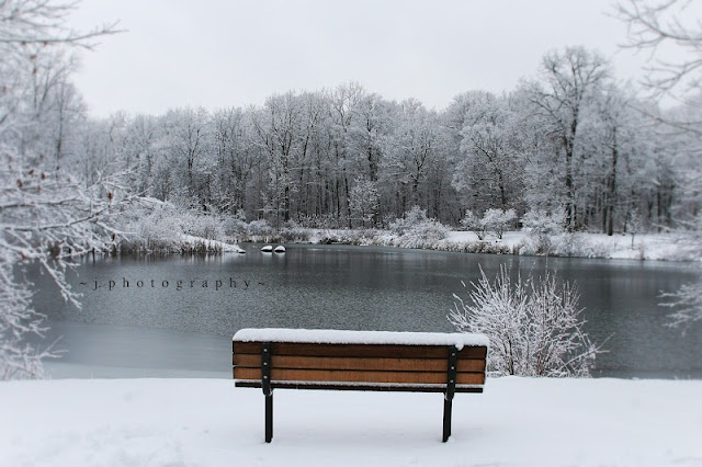 Winter Bench  #winter #photography  Photo by A Little Bit Crunchy A Little Bit Rock and Roll