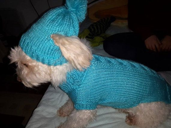 Pet Supplies/Pet Clothing-Accessories & Shoes/Clothing/Pets/Sweater/hoodie sweater/dog jersey/warm sweater/CuteDogClothes/dogdress/handmade