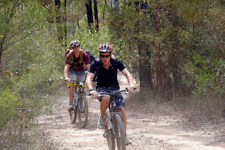 Mountain biking Murphys Creek Adventures