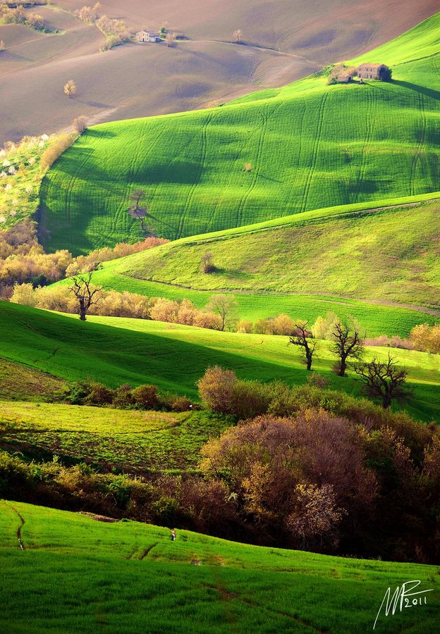 Oggi i due colori predominanti sono il bianco ed il grigio. E a noi manca il verde! [Marche, Italy] vero @MarChe Hindes Tourism? #fromitalywithlove