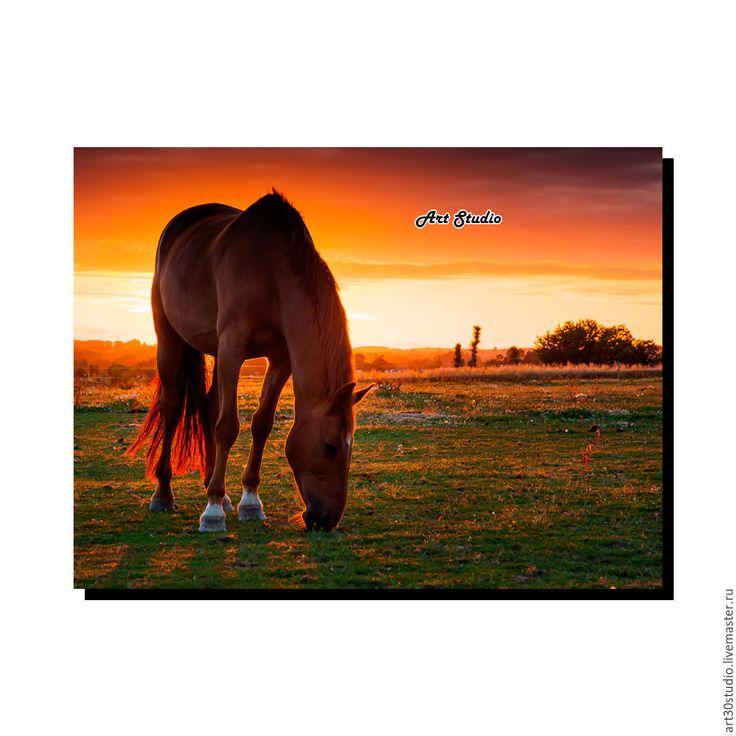 """Купить Картина """"Лошадь"""" купить/заказать печать/масло на холсте - картина в подарок, картина для интерьера, картина маслом"""