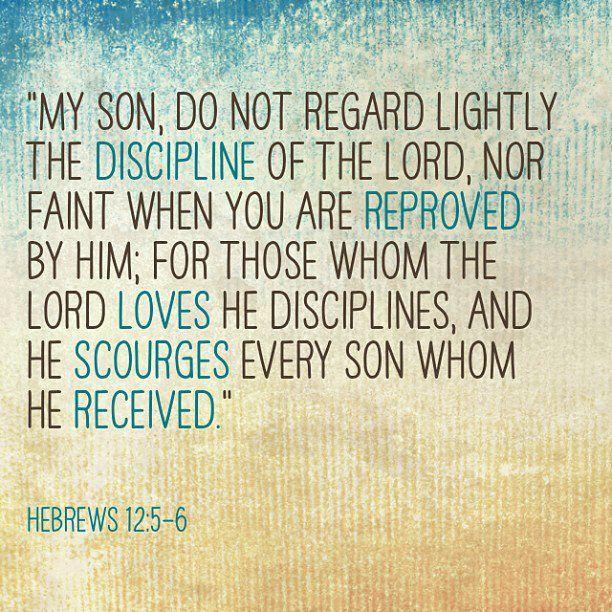 Hebrews 12:5-6   New Testament Scripture   Pinterest   The ...