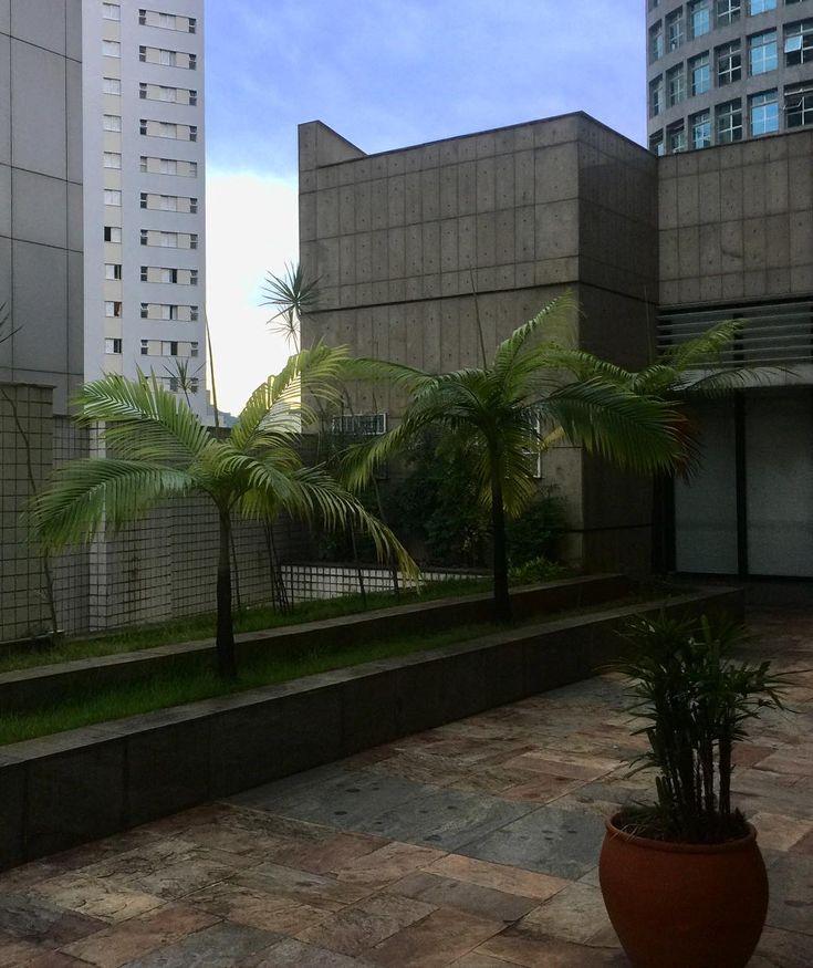 #urbansunset #sunset #sunsets #sunsetporn #sunsetlovers #instasunsets #sky #skys #skyline #skyporn #skyscraper #instasky #plants #plantpower #tree #trees #treeporn #tree_captures #urbannature #nature #natureporn #naturelovers #instanature #landscape #landscapes #landscaping #boanoite #Brasil #goodnight #Brazil