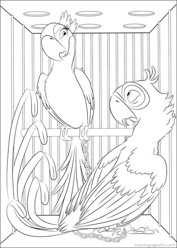 208 best images about rio on pinterest rio 2 the movie for Angry birds rio coloring pages