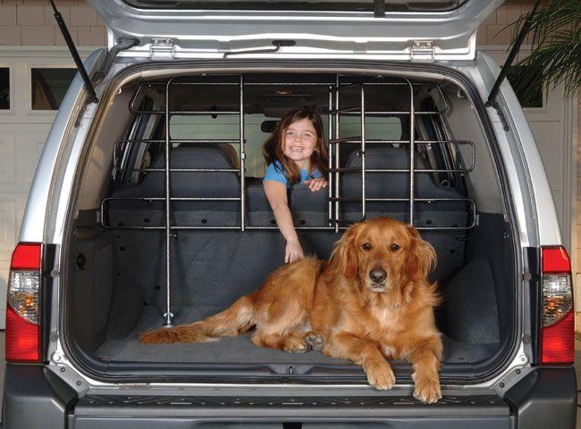 Car Dog Barrier: Best 25+ Pet Barrier Ideas On Pinterest
