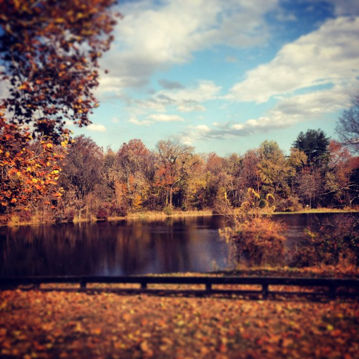 57 Best County Down Images On Pinterest: 57 Best Autumn In Loudoun Images On Pinterest