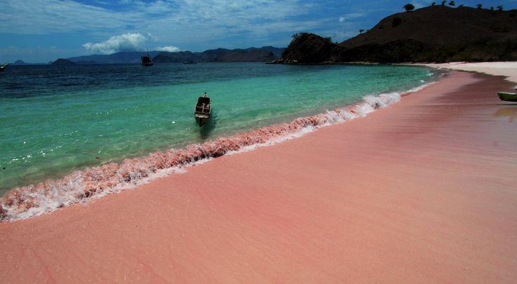 Definetely go here..the romantic pink beach, komodo island