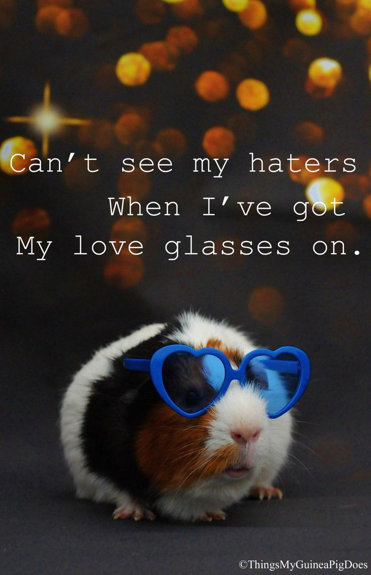 Watch life with love eyes and if you cannot, use love sunglasses :D #LoveLife