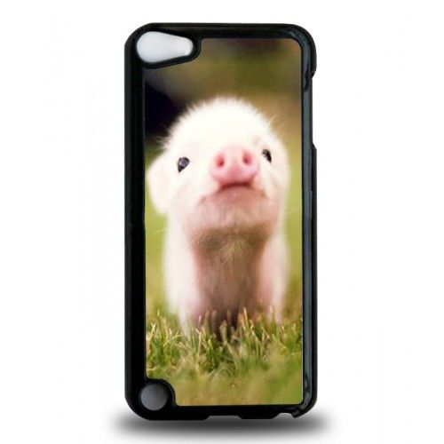 iPod Touch 6th Generation cases with pigs | Home » Cute ...