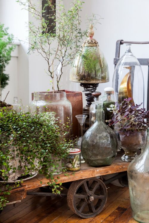 "Sneak Peek: An Eclectic Philadelphia Loft. ""I found this trolley cart on the street in NYC and rolled 20 blocks home to my loft with friends one late evening (very heavy!) The terrariums are from my artist friend Jojo who is a San Francisco artist called The Slug and the Squirrel."" #sneakpeek"