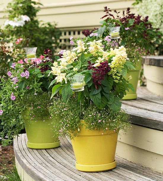 214 best pretty planters images on pinterest for Best low maintenance potted plants