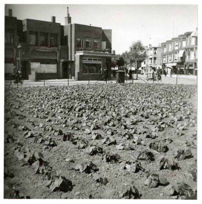 Thomsonplein, 1942