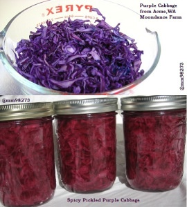 Perfect Pints Pickled Purple Cabbage #canning #eatlocal