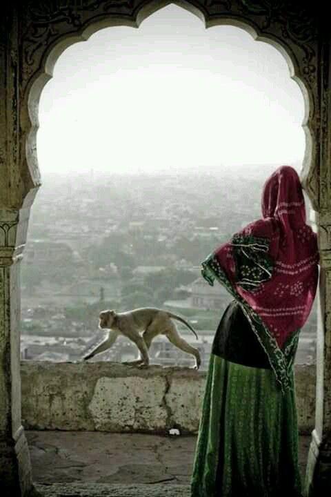 #India #incredibleindia #tajmahal