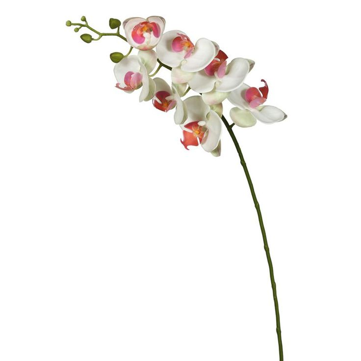 Vickerman 35H in. Real Touch Silk Orchid - FA172201