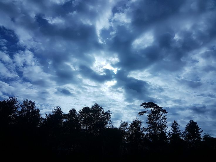 👼 Taking delight in the bright, sunny morning 😍  😙 Happy Sunday, ❤ Öêzånk2kœ 👬