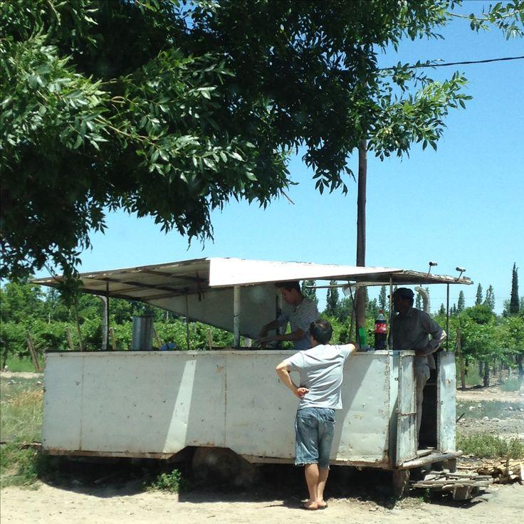Kiosco plegable, para venta de empanadas, ruta 60, Mendoza, Maipu.