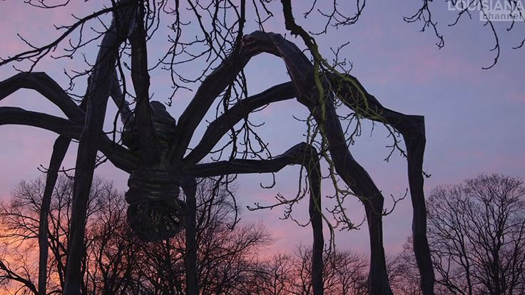 A ginormous 30 feet high spider would scare the life out of most of us. In this video three artists share their diverse feelings towards the spider sculpture made by French artist Louise Bourgeois – as a tribute to her mother.
