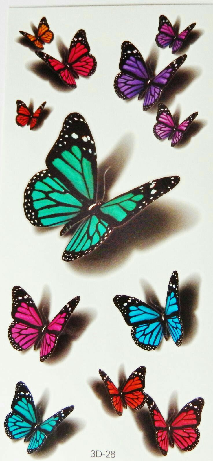 Estudio butterflies