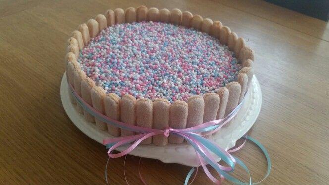 Babyshower muisjes taart
