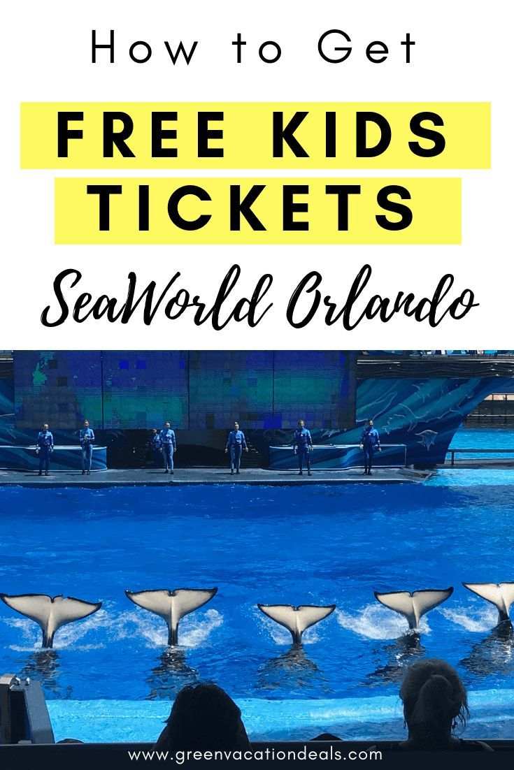 Free Kids Tickets Seaworld Orlando Green Vacation Deals American Travel Destinations Seaworld Orlando Amazing Travel Destinations