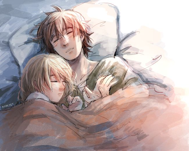 Hiccup and Astrid sleeping