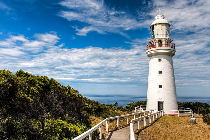 The Top 10 Things To Do And See In Apollo Bay