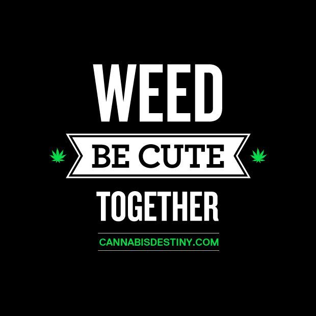 Being Together Quotes Tumblr