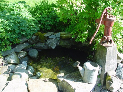 Best 25 old water pumps ideas only on pinterest house for Yard pond pumps