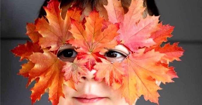 16 DIY originálních nápadů s využitím podzimního listí