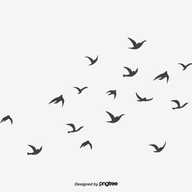 Black Flying Swallow Little Bird Swallow Free Png Transparent Clipart Image And Psd File For Free Download In 2021 Flying Bird Silhouette Flying Bird Drawing Butterfly Black And White